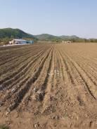 Продам земельный участок в Новой Силе. 60 000кв.м., собственность, электричество, вода. Фото участка