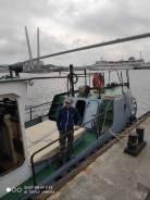 Аренда катера (облуживание на рейде Владивостока и за пределами порта). 10 человек, 16км/ч