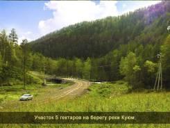 Распродажа земли в Горном Алтае! 5 гектаров. Скидка 55%. 50 000кв.м., собственность, электричество, вода