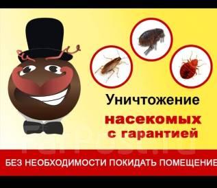 Уничтожение тараканов.