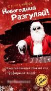 Новогодние, рождественские туры.