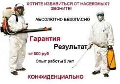 Уничтожение насекомых, тараканов, клопов, блох, клещей, ос, шершней, крыс