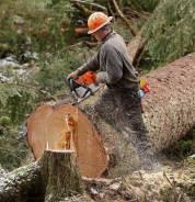 Вальщик леса, лесоруб. ООО ЛЕСХОЗ