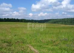 Земельный участок в Виноградовке. 700кв.м., собственность