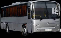 КАвЗ 4238. Автобус КАВЗ-4238 (CNG), 39 мест, В кредит, лизинг. Под заказ