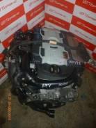 Двигатель Volkswagen BMY | Установка | Гарантия до 100 дней