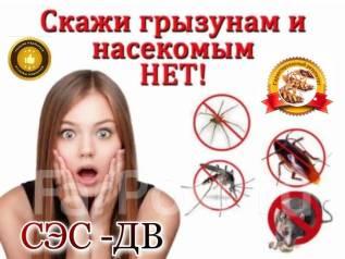 Уничтожение насекомых, тараканов, клопов, блох, крыс, клещей, плесени.