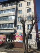 2-комнатная, улица Пушкина 37. Центр, агентство, 46,5кв.м. Дом снаружи