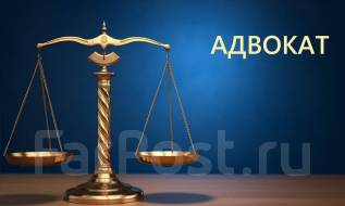 Адвокат по гражданским, уголовным и административным делам.