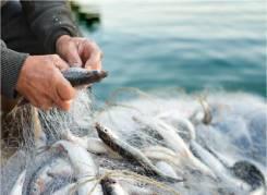 Рыбак. Новосибирская область