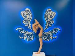 Художественная и эстетическая гимнастика в Краснодаре