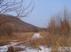 Земельный участок для фермерства, усадьбы или базы отдыха в с. Горное. 14 101кв.м., собственность. Фото участка