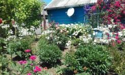 Индивидуальный жилой дом с большим участком и садом. Улица Северная 64, р-н поселок Уманский, площадь дома 42,0кв.м., площадь участка 4 000кв.м....