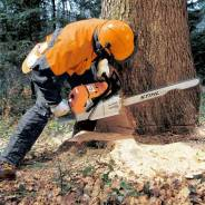 Вырубка , спил деревьев , веток , расчистка и многое другое !