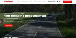 Чип тюнинг Увеличение мощности отключение экологии EURO-2