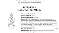 """Начальник смены. ООО """"Дальневосточная биотопливная компания"""". Улица Комсомольская 36"""