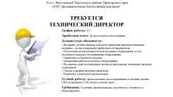 """Технический директор. ООО """"Дальневосточная биотопливная компания"""". Улица Комсомольская 36"""
