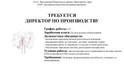 """Директор по производству. ООО """"Дальневосточная биотопливная компания"""". Улица Комсомольская 36"""