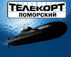 """Электросварщик. ООО """"Телекорт Поморский"""". АО ДВЗ """"Звезда"""""""