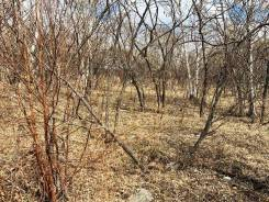 Продам земельный участок на Полярной (ул. Музыкальная). 1 000кв.м., собственность, электричество