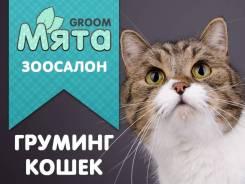 """Профессиональный уход, Стрижка Кошек в зоосалоне """"Мята Грум""""."""