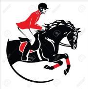 Конный спорт. Конные прогулки. Обучение верховой езде.