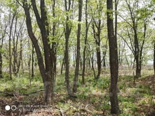 Продам земельный участок в п. Западный. 1 500кв.м., собственность. Фото участка