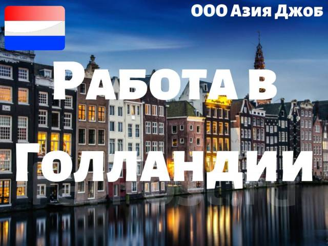 Голландия вакансии квартиры в дубай джумейра