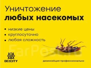 Уничтожение Насекомых, тараканов, клопов, блохи, крысы, потравим, травим