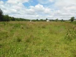 Земельный участок 60 соток, Горьковское шоссе. 6 000кв.м., собственность