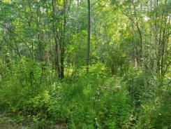 Продам земельный участок СДТ Зубровое. 1 600кв.м., собственность