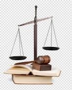 Юрист по налоговому, гражданскому, трудовому праву
