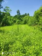 Перспективный земельный участок. 1 500кв.м., собственность, электричество, вода. Фото участка