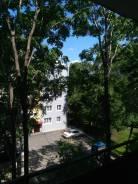 1-комнатная, улица Крестьянская 76. Центр, частное лицо, 30,0кв.м. Вид из окна днем