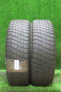 Bridgestone Ice Partner, 215/60 R16 95Q