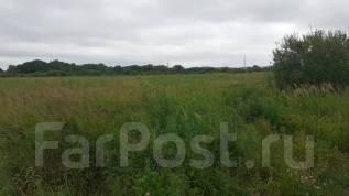 Срочно продаю участок в собственности 3 га земли в г. Артём Кневичи. 33 000кв.м., собственность, электричество. Фото участка