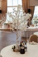 Декоративные деревья на Ваше мероприятие!