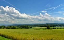 Продам земельный участок в Сухановке рядом с Андреевкой(Зарубино). 2 200кв.м., собственность, электричество