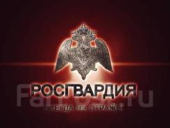 Полицейский. УВО по г. Владивостоку. Улица Комсомольская 7
