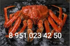 Купим любые морепродукты! Краб, креветка, гребешок