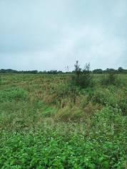 Продается земельный участок 3 га в Кипарисово -1. 30 000кв.м., собственность