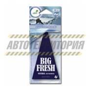 """Ароматизатор подвесной пластинка """"BIG FRESH"""" (альпийская свежесть) [AR-PABF-18]"""