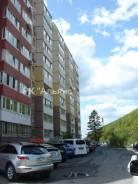 1-комнатная, улица Адмирала Горшкова 34. Снеговая падь, проверенное агентство, 35,1кв.м. Дом снаружи