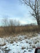 Осиновая речка 300 тыс. руб. 1 000кв.м., собственность, электричество