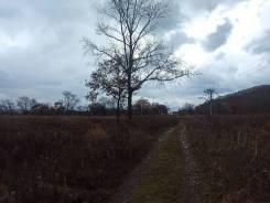 Земля в Анисимовке - 15 соток (1500 кв. м). 1 500кв.м., аренда. Фото участка