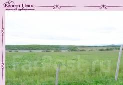 Земельный участок 3000 кв. м с. Прохоры. 3 000кв.м., собственность. Фото участка