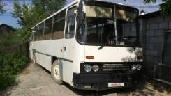 Ikarus 255. Икарус 255, 45 мест
