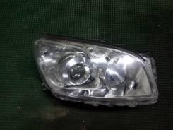 Фара правая Toyota Rav4 ACA30, 42-50 (Галоген)
