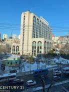 2-комнатная, улица Семеновская 34. Центр, проверенное агентство, 41,0кв.м. Вид из окна днём
