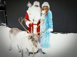 Деды Морозы.